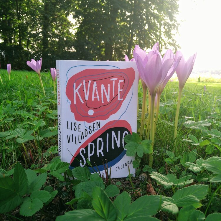 Bogen Kvantespring af Lise Villadsen fra forlaget Gyldendal placeret på en grøn plæne med lyserøde blomster omkring solnedgang