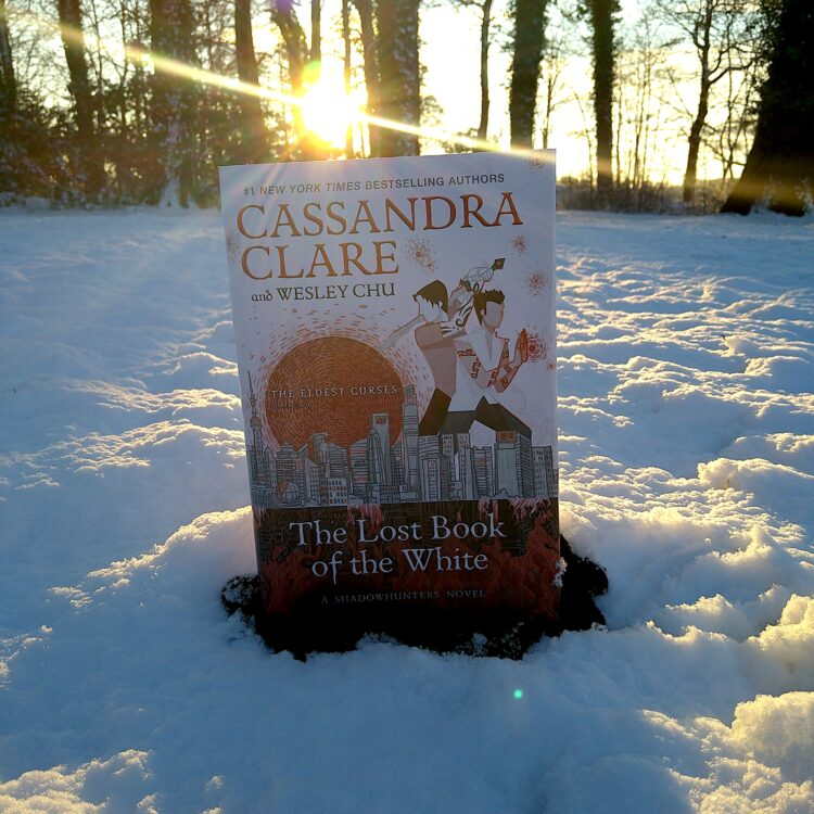 the lost book of the white by cassandra clare placed outside on the snow with the sun setting in the background